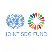 United Nations Joint SDG Fund